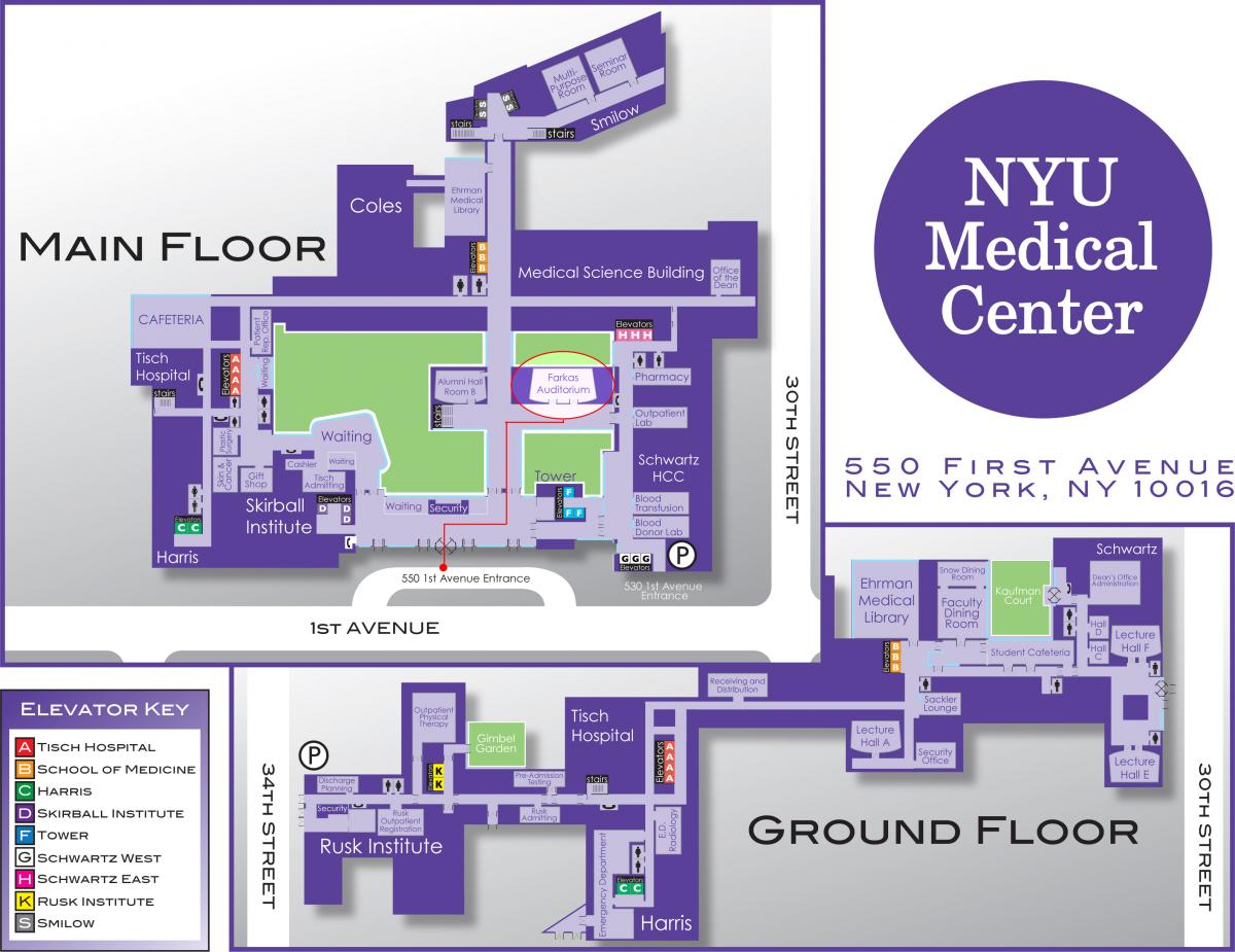 Image gallery nyulmc map sciox Images